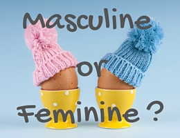 Masculine or Feminine? Telling the Gender of French Nouns